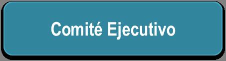 bt_ejecutivo